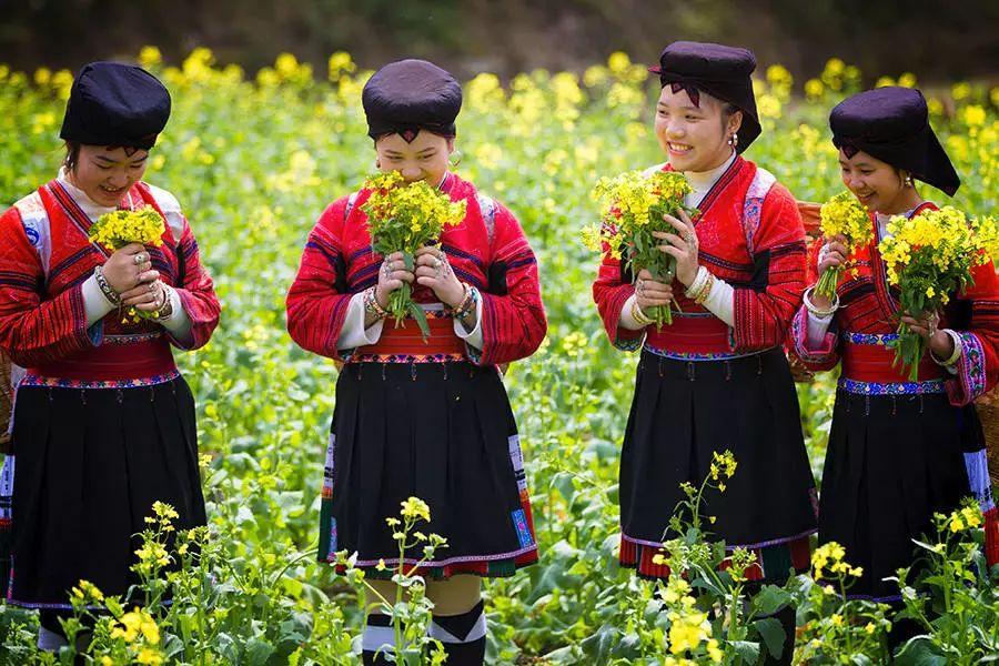 【重要通知】桂林市民福利来了!龙脊梯田门票优惠新政策!